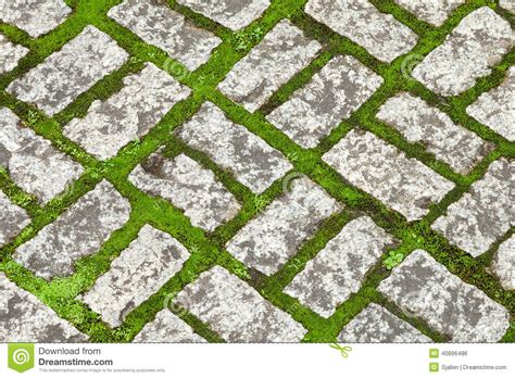 Concrete Block Floor Plans texture of pale decorative stone work with green moss