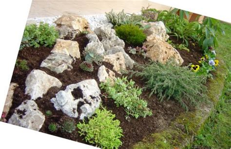 foto giardini rocciosi giardini rocciosi immagini fabulous with giardini