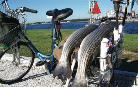 cape cod bicycle greetings from ct rat rod bikes