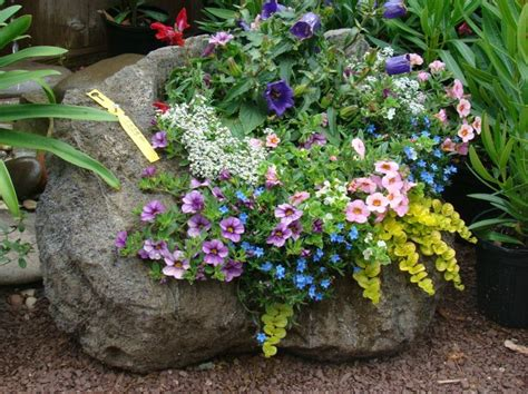 Rock Garden Planters 17 Best Images About Rock Planters On Gardens Set Of And Planters