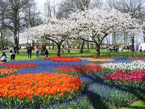 contoh gambar indah dan pemandangan yang menakjubkan galeri gambar taman bunga yang menakjubkan pernik dunia