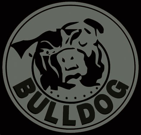 security alarms bulldog security alarms