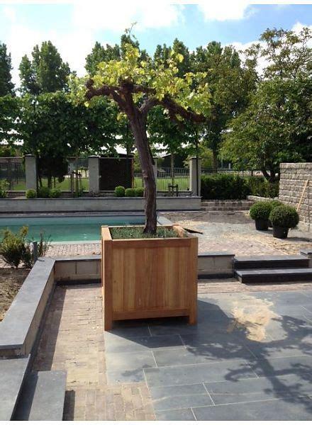 oude druif verplaatsen hardhouten plantenbak olbia black edition l120xb120xh95