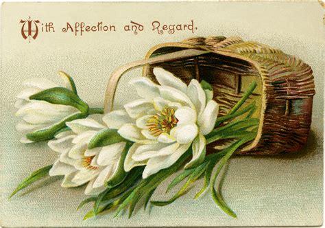 new year flower basket basket of flowers free vintage image design shop