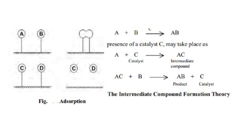 Mba Theory Of Consumption by Theories Of Catalysis Study Material Lecturing Notes