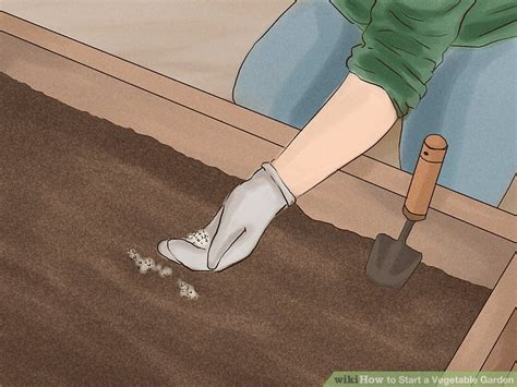 how to start a vegetable garden 15 steps with pictures