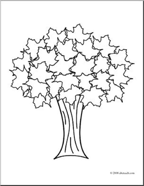 deciduous tree coloring page coloring page tree b w deciduous tree illustration
