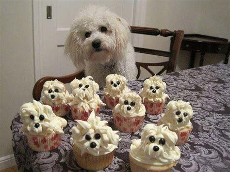 puppy birthday cakes white cupcakes easybaked