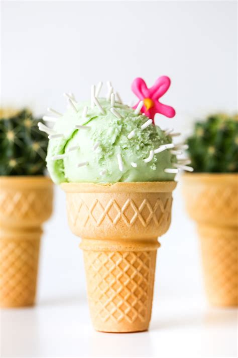 Home Interiors And Gifts Pictures cactus ice cream cones studio diy