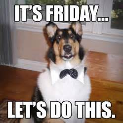 Weekend Dog Meme - friday meme dog weekend funny dogs pinterest