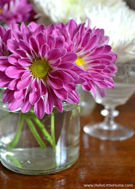 Inexpensive Flowers by Easy And Inexpensive Flower Arrangement