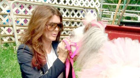 real housewives of beverly hills tuscany tamara tattles real housewives of beverly hills recap pony shows and