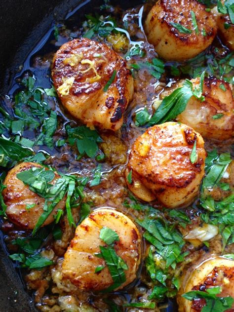 can dogs eat scallops garlic scallops recipe ciaoflorentina