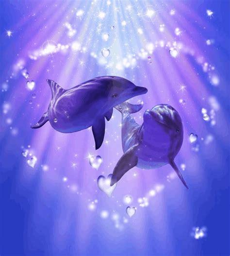 imagenes de amor animadas de delfines delfines con amor imagui