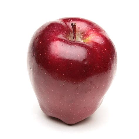 apple red a history of the apple ten objects red delicious erika