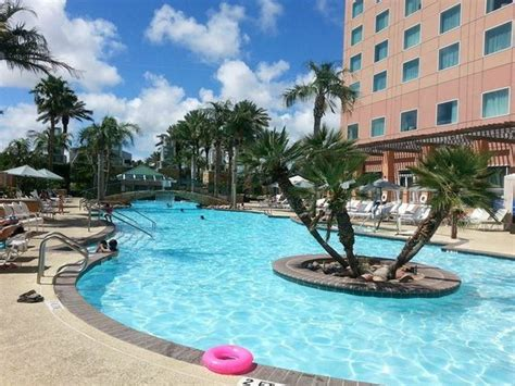 pool picture of moody gardens hotel spa convention