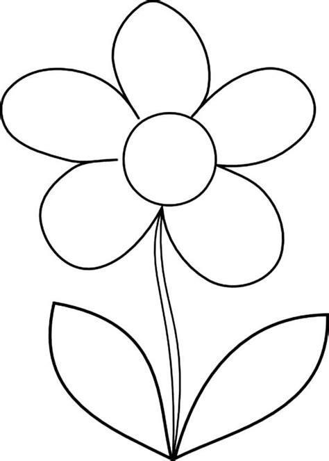 coloring page daisy flower how to draw daisy flower coloring page classroom ideas