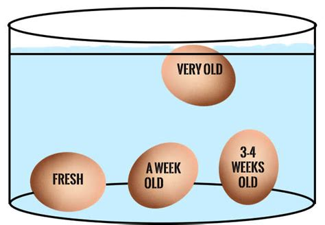 egg test water sink float how to tell if your eggs are fresh or expired times