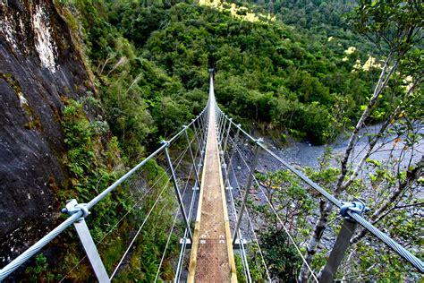 swing bridge new zealand swing bridge roberts point track chen photography