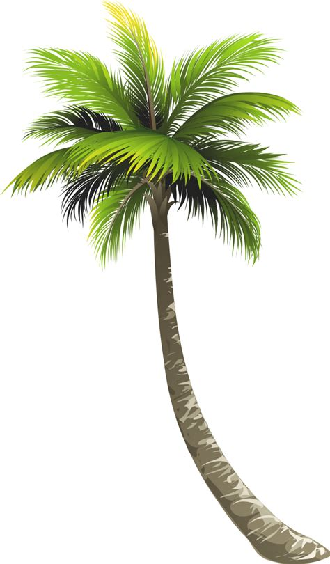braman honda palm new used honda dealer braman honda palm