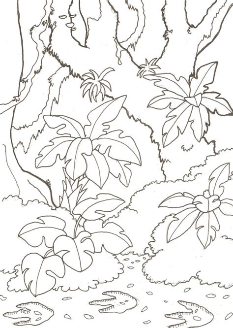 jungle landscape coloring pages image gallery jungle drawings
