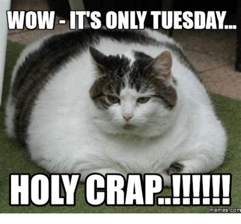 Tuesday Funny Memes - 25 best memes about its tuesday meme its tuesday memes