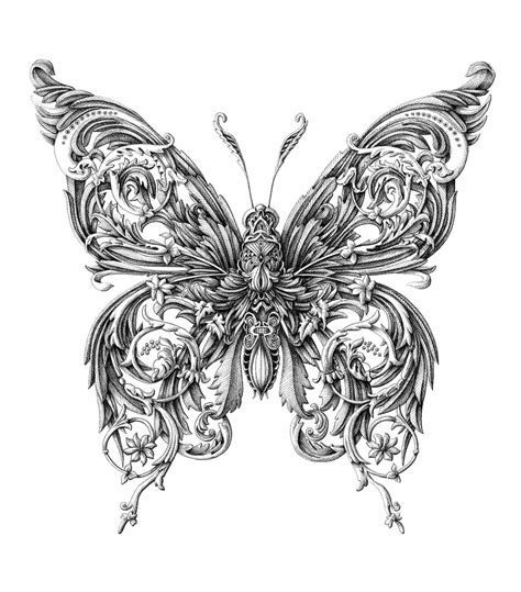 incredibly intricate renaissance style insect drawings by