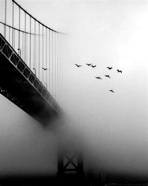 fotos en blanco y negro graciosas 61 fotograf 237 as en blanco y negro
