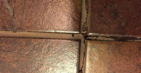 water under tiles in bathroom toilet leak under bathroom tile hometalk