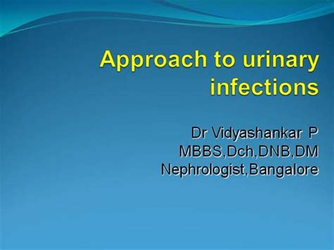 powerpoint templates urinary system urinary tract infections authorstream