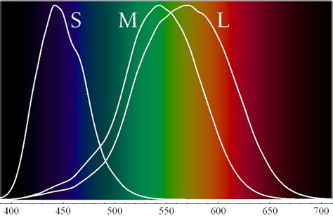 how does the eye see color visible light is it possible that there is a color our