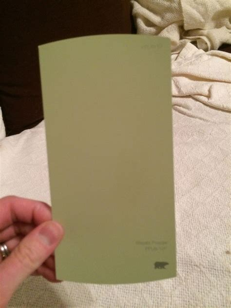 kitchen wall color behr wasabi powder new house kitchen