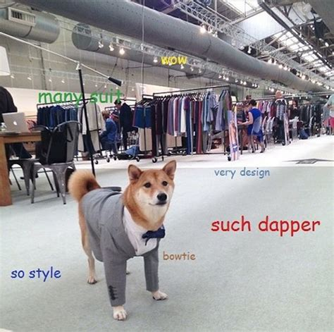 Such Dog Meme - doge memes the best of the doge meme humor funny doge