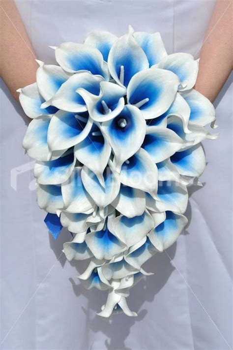 25  best ideas about Electric blue weddings on Pinterest