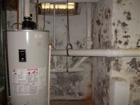 buying a house with mold in basement mold in house water heater photos the simple secret to preventing basement mold