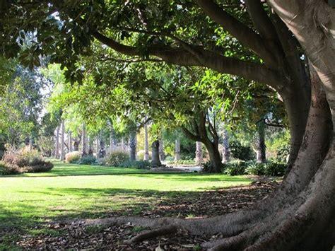 Williamstown Botanic Gardens Williamstown Botanic Gardens Reviews Williamstown Hobsons Bay Attractions Tripadvisor