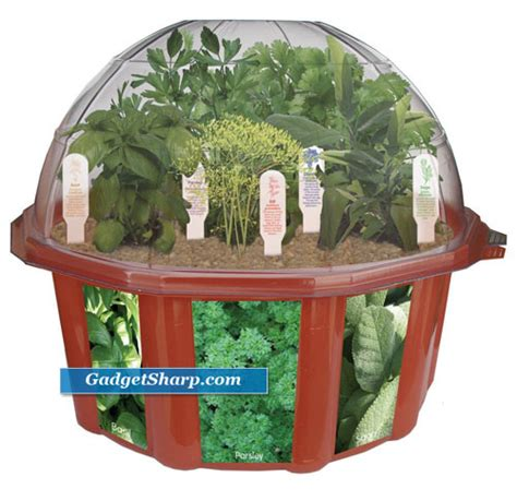 indoor herb garden kits best indoor herb garden kits gadget sharp