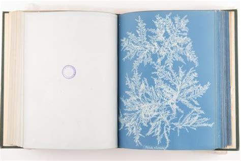 x marks the scot liss maccrimmon mystery books kirsty white botanics stories