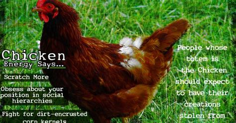 my lame addiction on pinterest 36 pins lame animal totem chicken martha beck martha beck