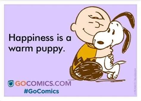 happiness is puppies do you like puppies casualconversation