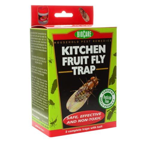 Kitchen Flies Kitchen Fruit Fly Trap Jim S Worm Farm