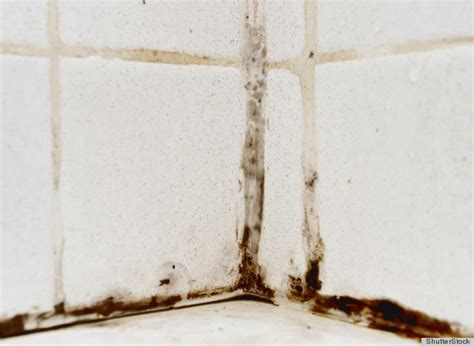 Mold In Bathroom by 10 Surprising Hacks That Will Make Your Bathroom A Better