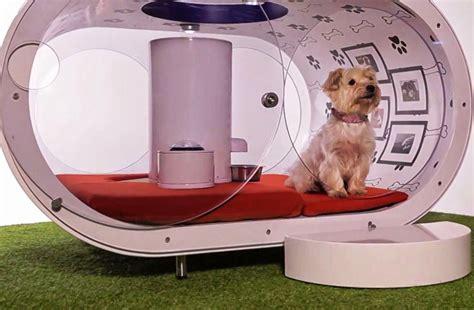 cani da casa casa per cani assurda da 30 000 dollari dotata di ogni