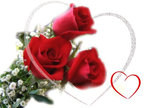 valentines day roses s day roses e cards 2017 card