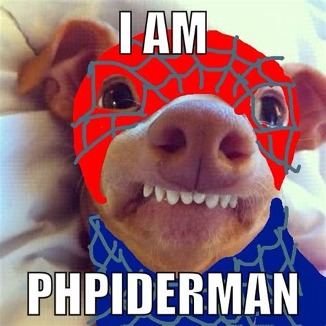Stephen Dog Meme - phpiderman phteven phteven steven with a ph