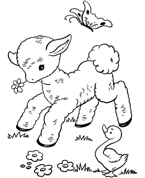 lamb coloring pages az coloring pages