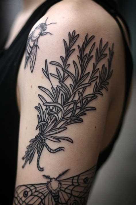 rosemary tattoo 88 best lavender images on lavender