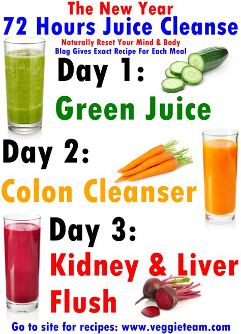 Juice Cleanse Recipes 3 Day Detox by 3 Day Juice Cleanse Weight Loss Recipe Chicposts