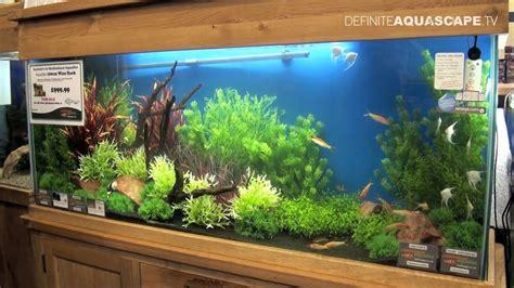 aquarium aquascaping ideas aquascaping aquarium ideas from aquatics live 2012 part 5 youtube