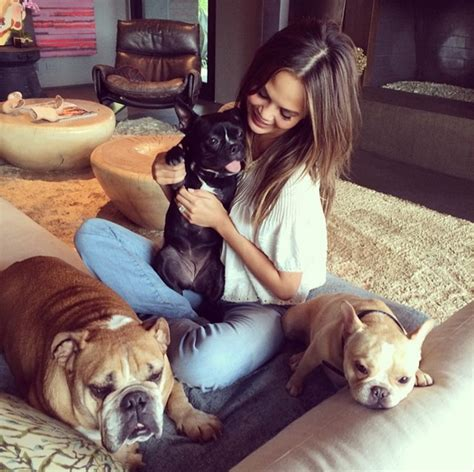instagram dog 12 more celebrity crazy dog ladies to follow on instagram